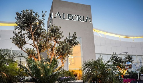 אלגריה אירועים